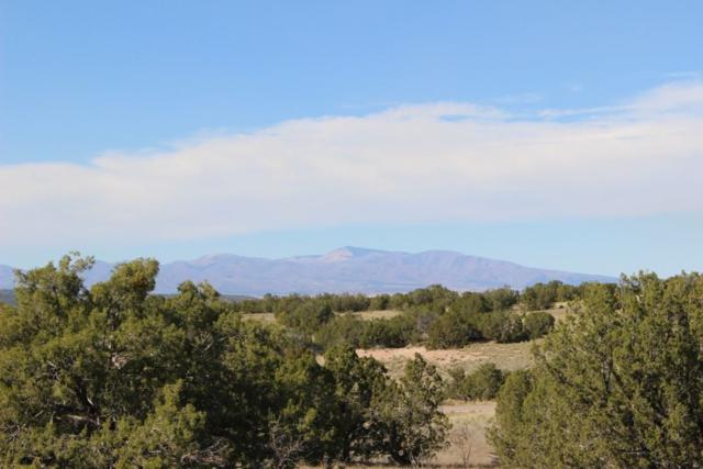 12 Via Palomita (Black Mesa, Lot 17), Santa Fe, NM 87506 (MLS #201800655) :: The Very Best of Santa Fe