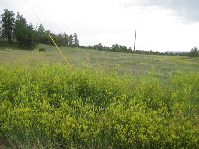 Lot 5, BK 7 Elk Dr. Chama West, Chama, NM 87520 (MLS #201800729) :: The Desmond Group