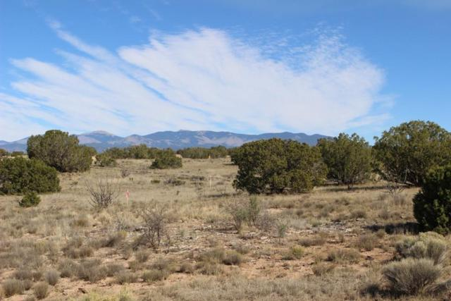 1 Via Palomita (Black Mesa, Lot 6), Santa Fe, NM 87506 (MLS #201800742) :: The Desmond Group