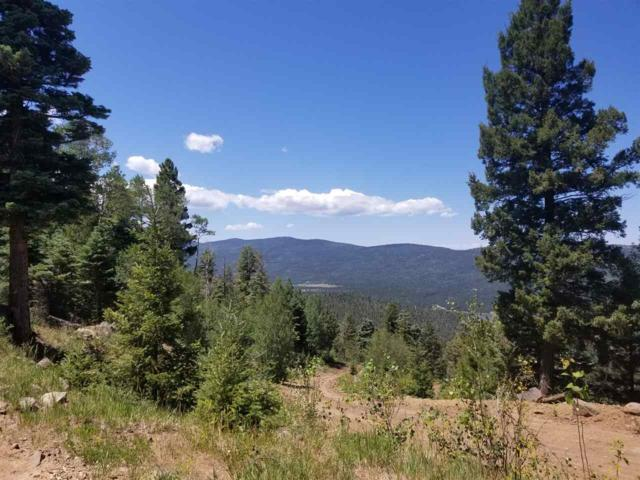 lot 656 Chalet #2, Angel Fire, NM 87710 (MLS #201801021) :: The Desmond Group