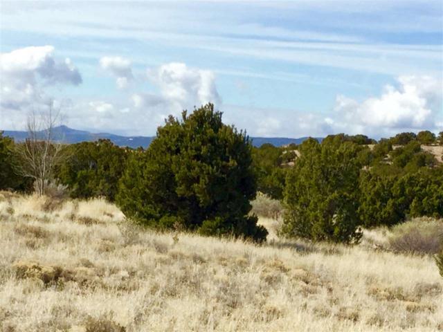 31 Star Dancer Trail, Santa Fe, NM 87506 (MLS #201801061) :: The Desmond Group