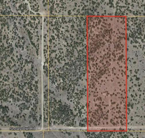 Snowy Owl Rd., Stanley, NM 87056 (MLS #201801086) :: The Desmond Group