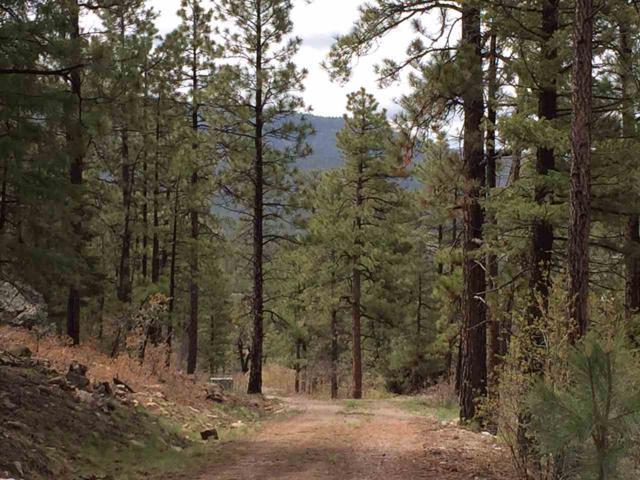 Lot 3, Bobcat Run, Chama, NM 87520 (MLS #201801211) :: The Very Best of Santa Fe