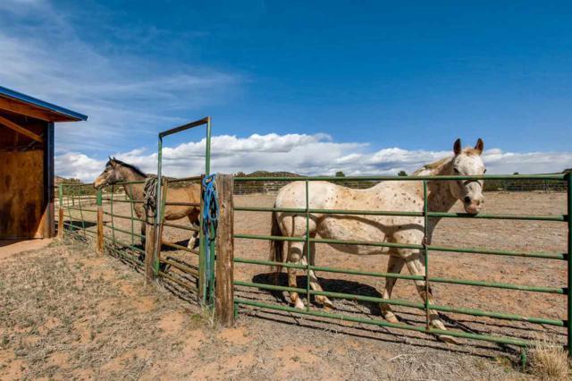 60 Vaquero Road, Santa Fe, NM 87508 (MLS #201801313) :: The Very Best of Santa Fe