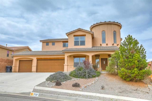 737 Loma Pinon Loop, Rio Rancho, NM 87144 (MLS #201801446) :: The Desmond Group