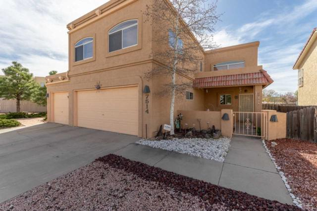 7514 Snow Blossom, Santa Fe, NM 87507 (MLS #201801507) :: The Desmond Group