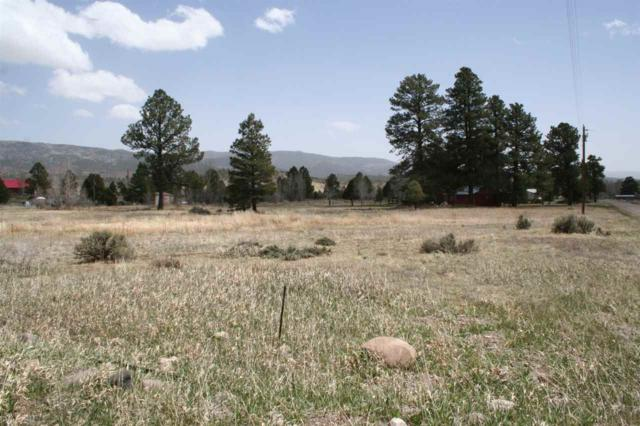 Juniper Road, Rio Chama Estates Rio Chama Estat, Chama, NM 87520 (MLS #201801552) :: The Very Best of Santa Fe