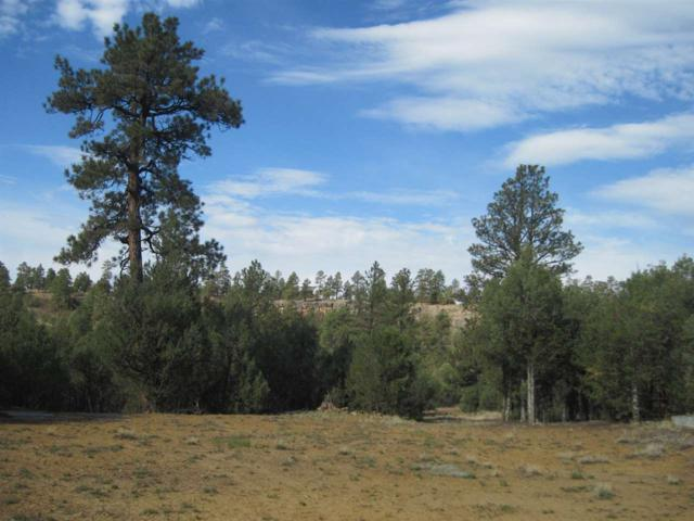 Shroyer Drive, Chama, NM 87520 (MLS #201801563) :: The Desmond Group