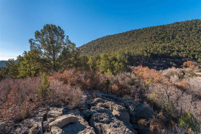 CRB 44A Lower Colonias Cow Creek, Cow Creek, NM 87552 (MLS #201801702) :: The Very Best of Santa Fe