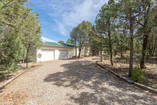 22 Mirasol Ln, Pecos, NM 87552 (MLS #201801843) :: The Very Best of Santa Fe