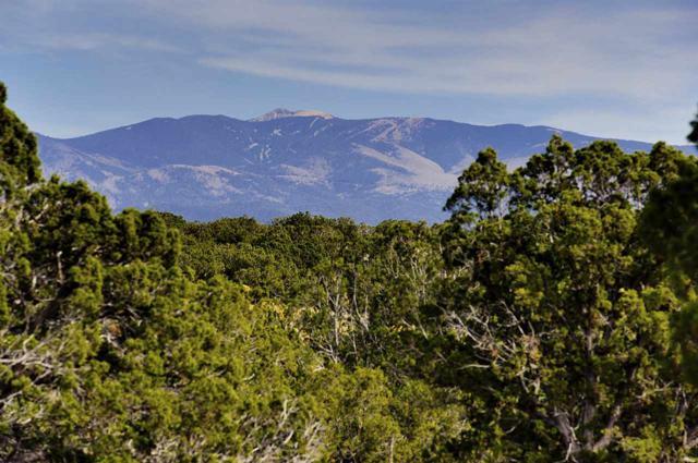 7 Hacienda Del Canon (Lot 29, Estancias), Santa Fe, NM 87506 (MLS #201801910) :: The Very Best of Santa Fe