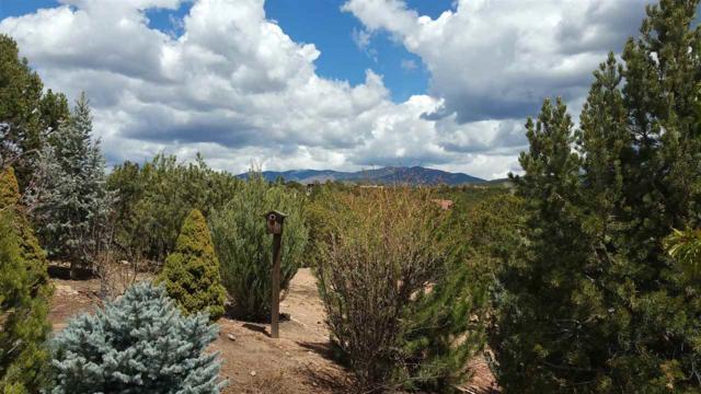 391 Calle Colina, Santa Fe, NM 87501 (MLS #201801938) :: The Desmond Group