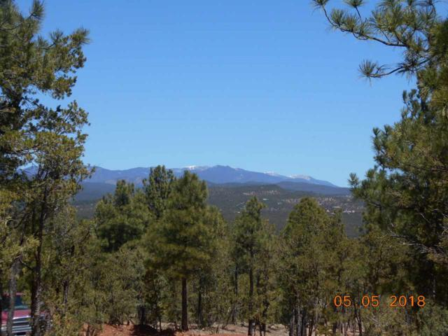 LOT 3A Cicuye Road, Pecos, NM 87552 (MLS #201801953) :: The Desmond Group