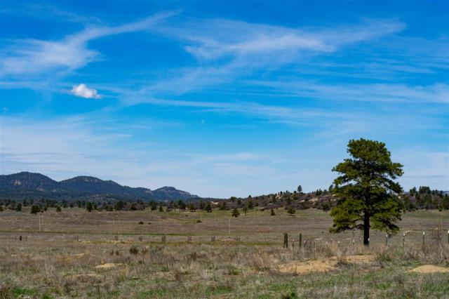 Block 1 Lot 6 Antelope Hollow Chama West Subd, Chama, NM 87520 (MLS #201801979) :: The Desmond Group