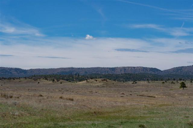 Block 1 Lot 9 Chama West Sub - Deer Trail Rd Chama West, Chama, NM 87520 (MLS #201801981) :: The Desmond Group