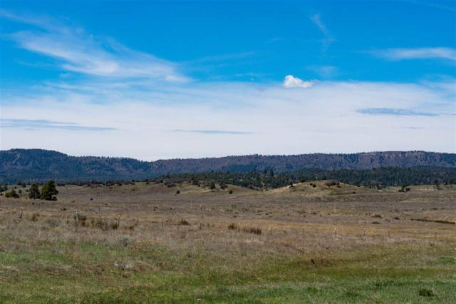 Block 2 Lot 4 Chama West Sub - Bison Lane Chama West Subd, Chama, NM 87520 (MLS #201801983) :: The Desmond Group