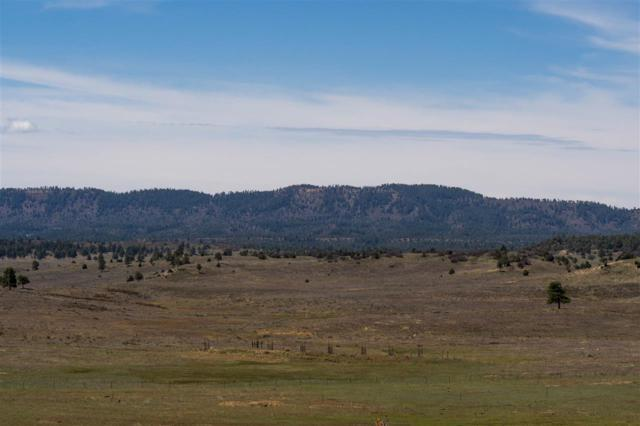 Block 3 Lot 2 Chama West - Gourse Loop Chama West, Chama, NM 87520 (MLS #201801984) :: The Desmond Group