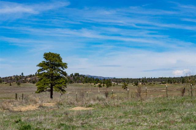Block 2 Lot 13 Chama West Sub. Deer Trail Rd Chama West Subd, Chama, NM 87520 (MLS #201801985) :: The Desmond Group