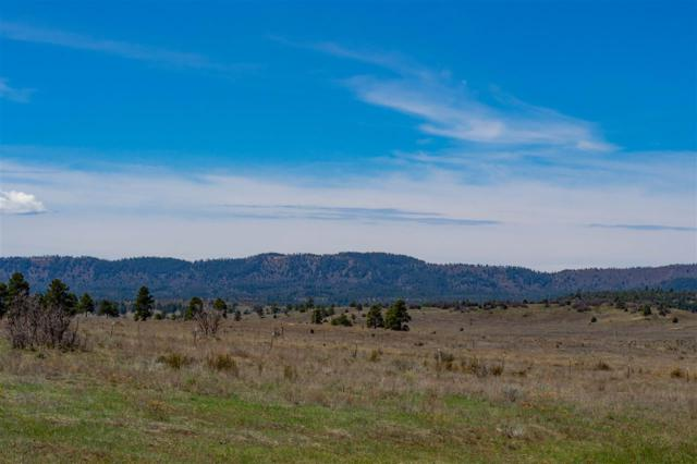 Block 5 Lot 2 Chama West Subd. - Grouse Loop Chama West Subd, Chama, NM 87520 (MLS #201801991) :: The Desmond Group