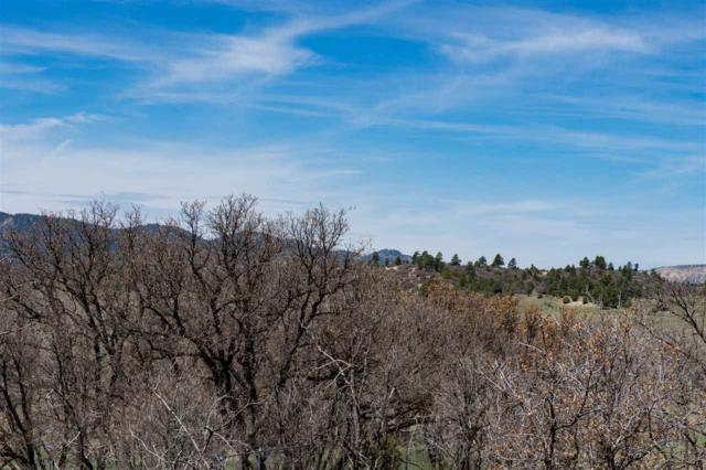 Block 5 Lot 3 Chama West Subd. - Grouse Loop Chama West Subd, Chama, NM 87520 (MLS #201801992) :: The Desmond Group