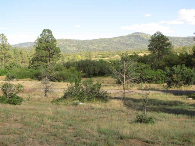 Indian Paintbrush Dr, Chama, NM 87520 (MLS #201802019) :: The Bigelow Team / Realty One of New Mexico