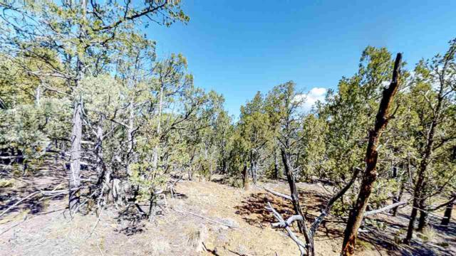 7B Cicuye Rd, Pecos, NM 87535 (MLS #201802072) :: The Desmond Group