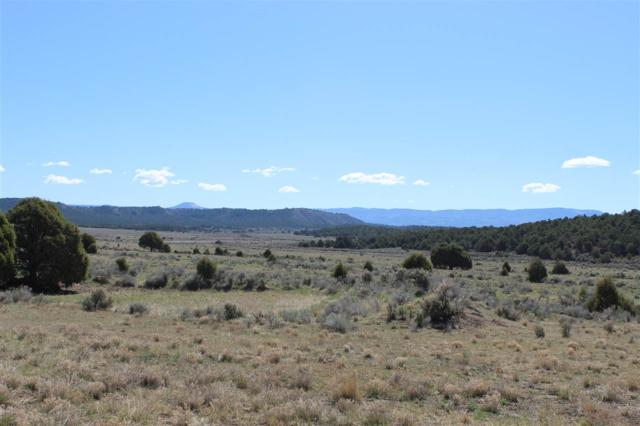 24889 Highway 84, Cebolla, NM 87518 (MLS #201802206) :: The Desmond Group