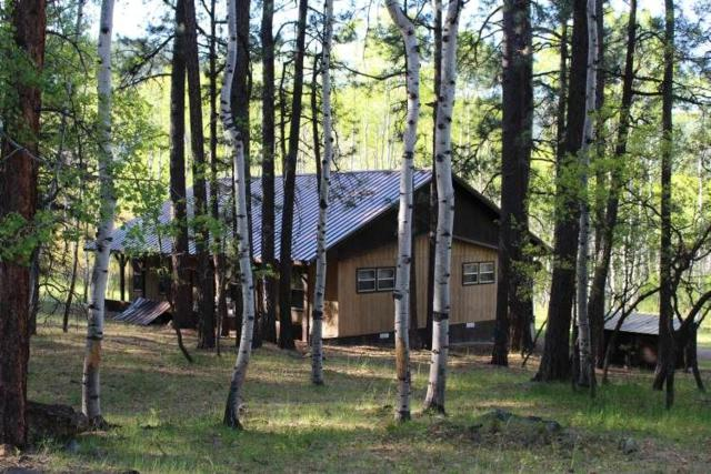 62 Lake View Drive, Chama, NM 87520 (MLS #201802287) :: The Desmond Group