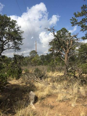 Lot 1 Soaring Hawk, Santa Fe, NM 87508 (MLS #201802290) :: The Desmond Group