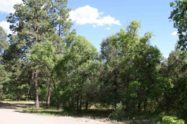 Brazos Estates Brazos Estates, Chama, NM 87520 (MLS #201802519) :: The Very Best of Santa Fe