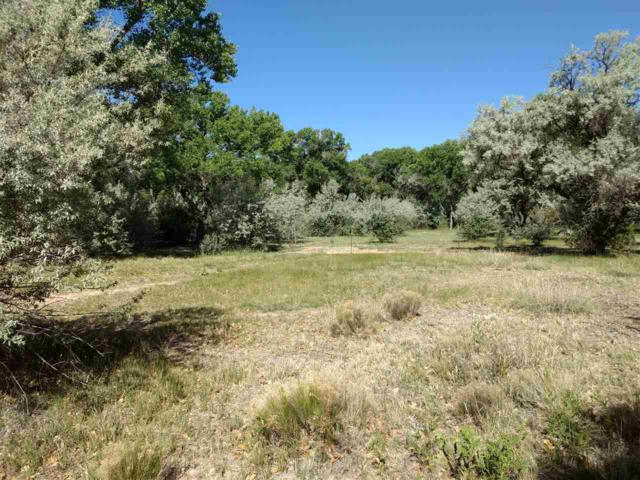 #62 Tract III Sf County Road 84D, Jaconita, NM 87506 (MLS #201802681) :: The Desmond Group