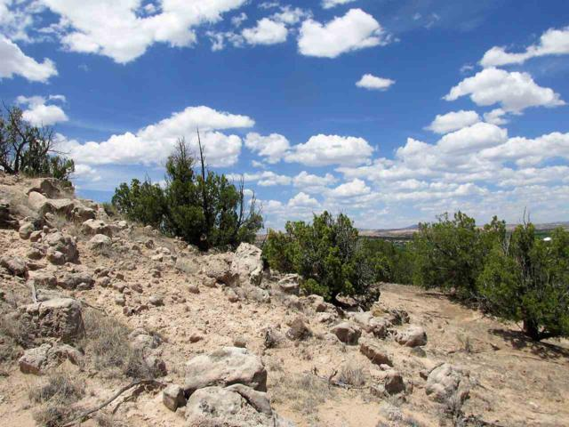 TBD Cedar Ridge Loop, Ojo Caliente, NM 87549 (MLS #201802818) :: The Desmond Group