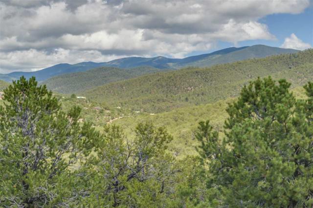 1175 S Summit Drive, Santa Fe, NM 87501 (MLS #201802884) :: The Desmond Group
