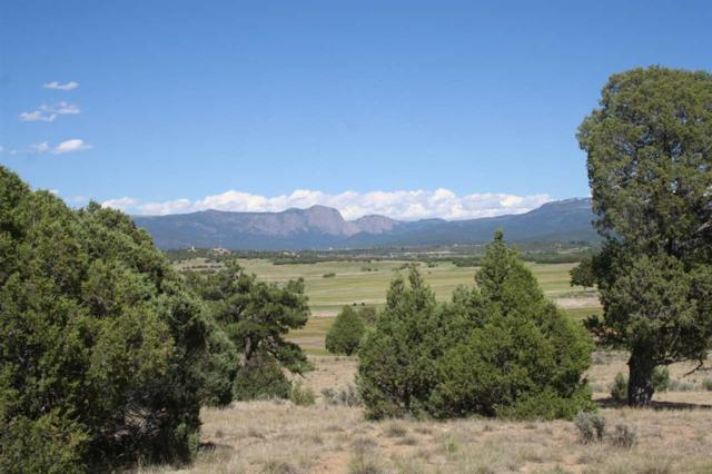 TBD Off State Road 95, Longhorn, Rutheron, NM 87575 (MLS #201802936) :: The Very Best of Santa Fe