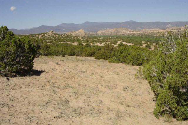 Lot 5 Rancho De San Juan, Ojo Caliente, NM 87549 (MLS #201802992) :: The Desmond Group