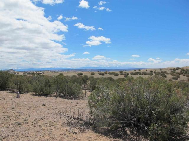 Abiquiu Heights, Medanales, NM 87548 (MLS #201803002) :: The Desmond Group