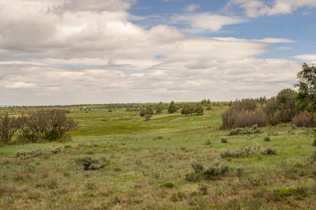1 Forest Rd 124, Cebolla, NM 87518 (MLS #201803098) :: The Desmond Group