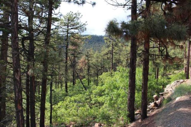 Lot A-2-C Brazos Meadows Sd, Chama, NM 87520 (MLS #201803135) :: The Desmond Group