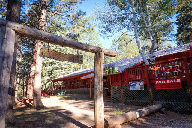 10 Falls Creek Rd, Chama, NM 87520 (MLS #201803224) :: The Desmond Group