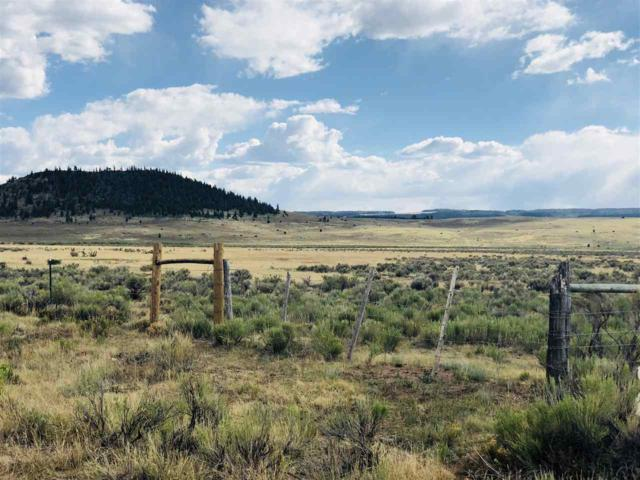 Forest Road 87, Chama, NM 87577 (MLS #201803234) :: The Desmond Group