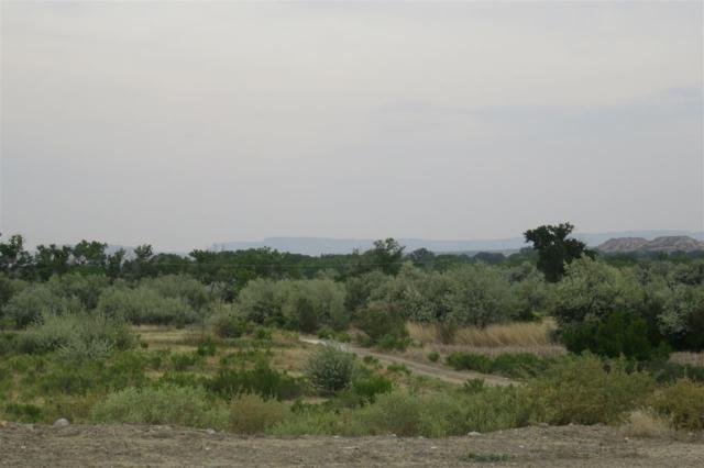 Tract 2&3 Hwy 64, Bloomfield, NM 87413 (MLS #201803264) :: The Desmond Group