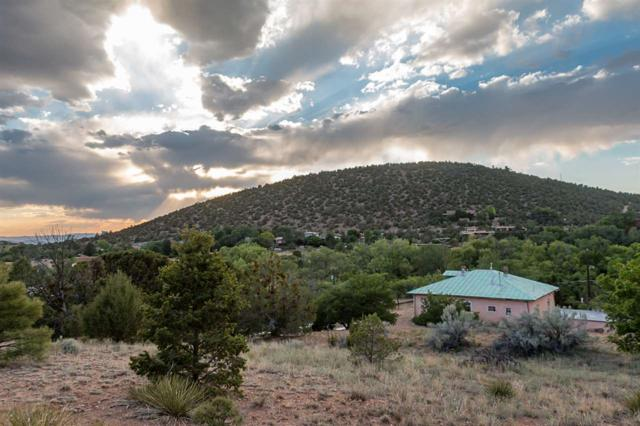 1500 Upper Canyon Rd, Santa Fe, NM 87501 (MLS #201803270) :: The Desmond Group