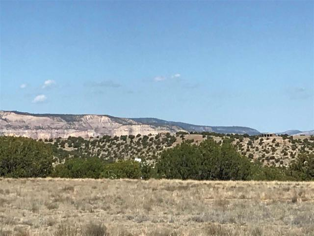 18 High Mesas At Abiquiu, Youngsville, NM 87064 (MLS #201803316) :: The Desmond Group