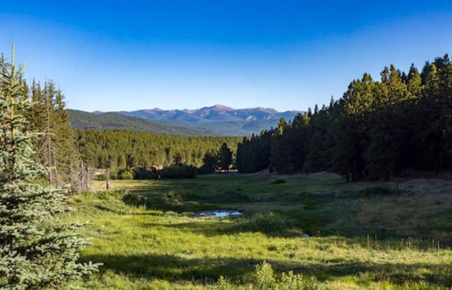 Angel Fire, Tracts E-2, D-2, F, Angel Fire, NM 87710 (MLS #201803395) :: The Desmond Group