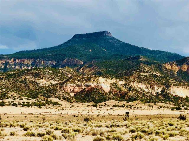 Nm 96, Abiquiu, NM 87510 (MLS #201803509) :: The Very Best of Santa Fe