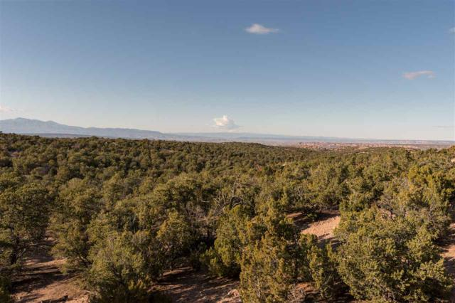 305 Pawprint Trail, Lot 128 Lot 128, Santa Fe, NM 87506 (MLS #201803542) :: The Desmond Group
