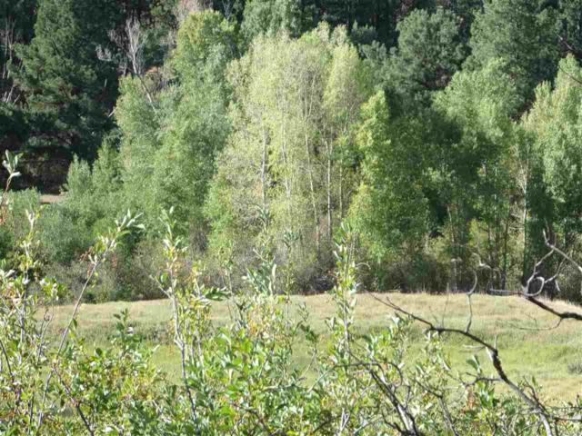 Eagle View Tract Larkspur Way, Chama, NM 87520 (MLS #201803558) :: The Bigelow Team / Realty One of New Mexico