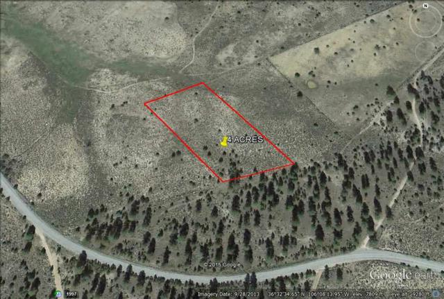 Mile Marker 18 State Rd 111, Vallecitos, NM 87581 (MLS #201803570) :: The Bigelow Team / Realty One of New Mexico