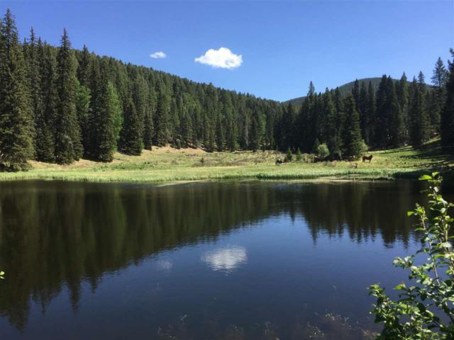 86 Bull Creek Area, Pecos, NM 87552 (MLS #201803640) :: The Desmond Group