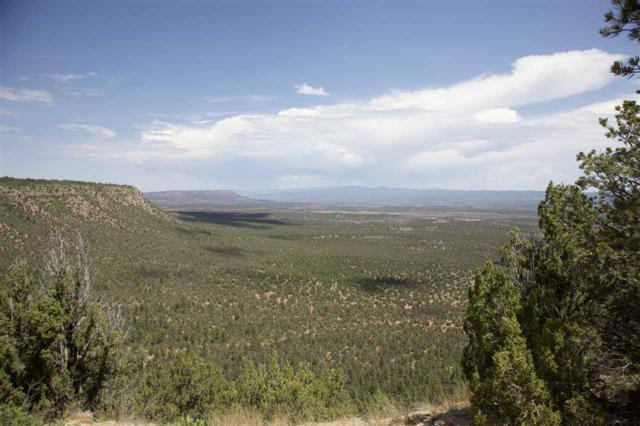 Cr B31a Tract #9, Gonzales Ranch, NM 87560 (MLS #201803716) :: The Desmond Group